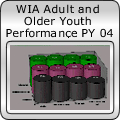WIA Adult and Older Youth Performance PY 04
